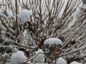 Winterwerk18