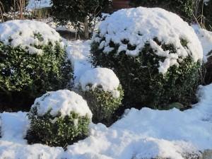 2 Winterwerk GartenLamberty