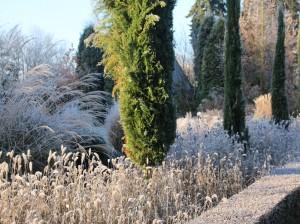 Janke Winter1