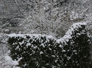 Winterwerk16